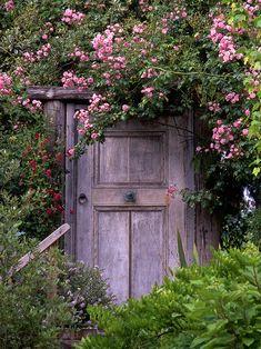 A glorious garden de
