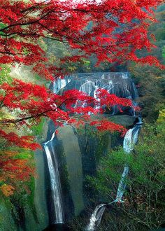 Fukuroda Falls, Japan #BeautifulNature #Waterfalls #Nature