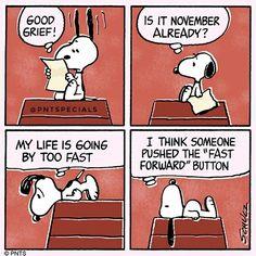 #peanutsspecials #pntspecials #pnts #schulz #snoopy #goodgrief #november #life #fastforward