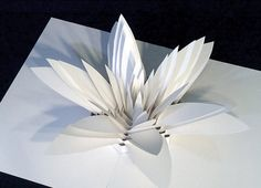 Paper engineering.