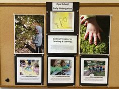 Guiding Principles and Learning from Opal School