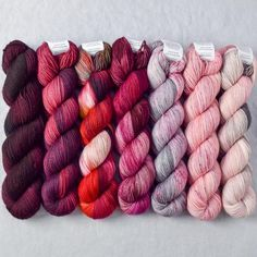Special Edition 204 - Miss Babs Yummy 2-Ply Fade Set