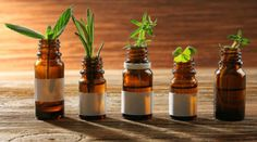 Naturopaths have no place providing health care to children - Gesunder Lebensstil Wellness Tips, Health And Wellness, Health Care, Chinese Plants, Teen Depression, Kids Health, Children Health, Sports Nutrition, Hemp Oil