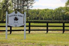Alturia Farm wedding venue is located near Richmond, VA in King William.