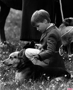 A beautiful prince William, dressed for the show ring, waits patiently with one of his grandmother's famous corgis. Kids, dogs and ponies are the a magical combination.