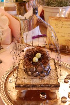 wire bird case