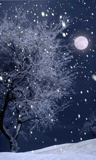 snowy night moon