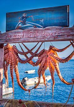 Santorini - Ammoudi, Greece - Joseph Casas -