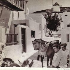 Street donkey abt Images grom tavelguidebook plm many much older pictures of Mykonos (Greece) and people. Mykonos Island Greece, Greece Islands, Athens Greece, Greece Photography, Old Photography, Greece Pictures, Old Pictures, Vintage Pictures, Myconos