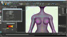 WorkShop Free - Rigging em Maya
