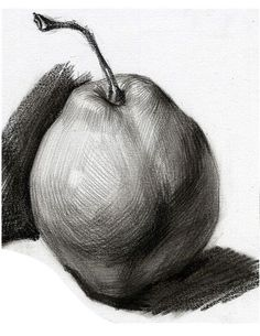 Learning to Draw? You're Gonna Need a Pencil - Drawing On Demand Pencil Art Drawings, Realistic Drawings, Drawing Sketches, Drawing Techniques, Drawing Tutorials, Drawing Lessons, Fruits Drawing, Observational Drawing, Basic Drawing