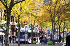 Denver's 16th street mall, a mile-long pedestrian promenade, is in the heart of downtown. Explore restaurants, stores and things to do along the 16th Street Mall.