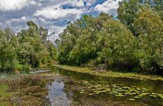 Ljepote Bosne i Hercegovine: Park Prirode Hutovo Blato