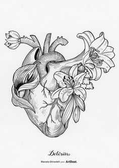 Hear illustration by Marcela Ghirardelli Arte Com Grey's Anatomy, Anatomy Art, Heart Anatomy Drawing, Anatomical Heart Drawing, Art Sketches, Art Drawings, Tattoo Bein, Desenho Tattoo, Photocollage