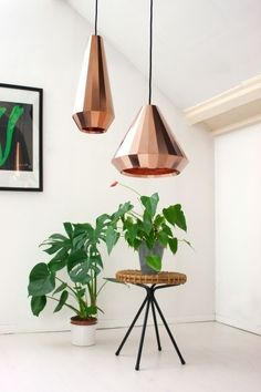 copper lights/Plants. Lovelly! See more Copper inspirations at http://www.brabbu.com/en/inspiration-and-ideas/ #CopperLighting #CopperDesign #CopperDecoration