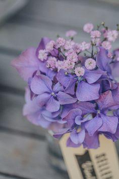 <3 HYDRANGEA centerpiece - Pottery Garden Wedding Ideas captured by Thomas Steibl - via ruffled