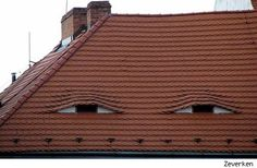 Roofing Portal presents a wonderful selection of funny pictures related to roofing. Set aside your business for a moment and have a laugh with us. Just delicate roofing humor with memes and cartoons. Pictures Images, Funny Pictures, Funny Pics, Hilarious, Things With Faces, Weird Things, Funny Things, Creepy Faces, Photos Of Eyes