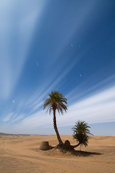 Desert under the moonlight Erg Chebbi, Northern Sahara, Morocco