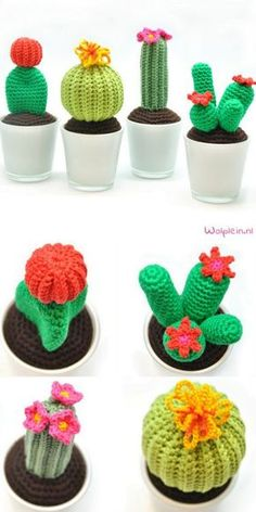 DIY Crochet Cacti Free Patterns from Wol Plein.And if cactus DIYs that are crocheted, knitted, cupcaked, wired, pincushioned and pillowed aren't enoug Diy Crochet Cactus, Crochet Cactus Free Pattern, Crochet Home, Cute Crochet, Crochet Flowers, Knit Crochet, Crochet Patterns, Crochet Pillow, Cactus Diys