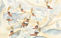 Eleven brothers, all turned to swans by a simple spell of jealousy. From The Wild Swans by Jackie Morris.