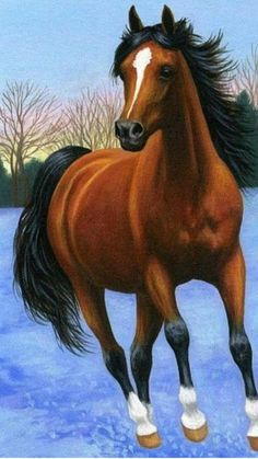 Beautiful Horse Pictures, Most Beautiful Horses, Art Painting Gallery, Love Painting, Horse Drawings, Animal Drawings, Winter Horse, Bay Horse, Brown Horse