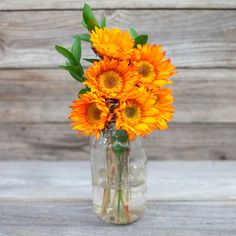 Mom will love this beautiful orange sunflowers and green ruscus. Ships next day from our farms on the California coast to your recipient's door.