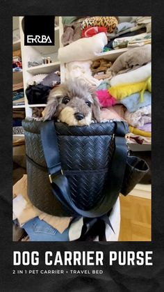 Small Pet Carrier, Dog Carrier Purse, Dog Carrier Bag, Designer Dog Carriers, Dog Supplies, Dog Bed, Small Dogs, Dog Lovers, Puppies