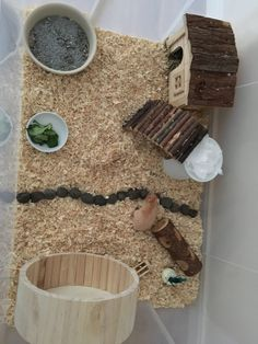 Natural cage for hamster