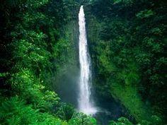 Akaka Falls..Hawaii..love it here..so beautiful..