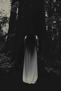 darkness | eerie | mystical | witch | mystic | deep in the woods | spooky | mystical