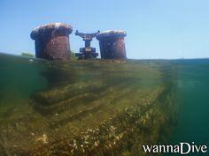 scuba diving photo at Isla Larga, Venezuela
