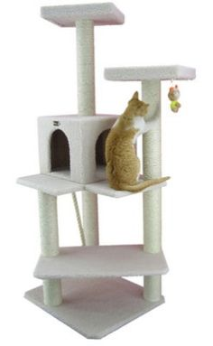 Cat Tree - Relatively cheap for the size of it.