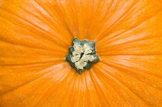 Pumpkin is a low-calorie vegetable that's high in fiber and vitamin A. Read more: http://ti.me/O0t9aD