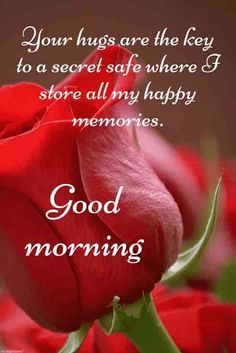 Good Morning Messages And Images sending To your Love is Liked By many People. Love is Part of Life and it is wonderful. For Showing Their love Toward Partner This is the best way. love is everything in this world Romantic Good Morning Messages, Lovely Good Morning Images, Good Morning Roses, Latest Good Morning, Good Morning My Love, Good Morning Texts, Good Morning Picture, Good Morning Greetings, Morning Status
