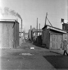 Archives de Montréal, Ruelle de Goose Village, 1963, VM94-C270-0247 Old Montreal, Montreal Ville, Old Pictures, Old Photos, Canada, Ghost Towns, The Neighbourhood, Road Trip, City