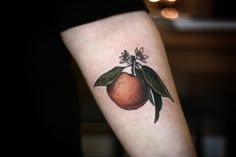 Satsuma with blossoms by Alice Carrier at Wonderland Tattoo, Portland Oregon Body Tattoos, New Tattoos, Tatoos, Back Tattoo, I Tattoo, Wonderland Tattoo, First Tattoo, Future Tattoos, Flower Tattoos