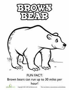 Worksheets: Brown Bear Coloring Page More