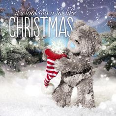 3D Holographic Hat And Snowflake Me to You Bear Christmas Card £2.99