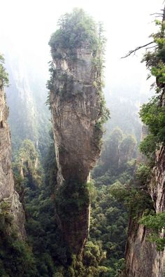 Zhangjiajie National Forest Park, China... Did you know J.Cameron based the floating Mts of Pandora on this place for Avatar?!