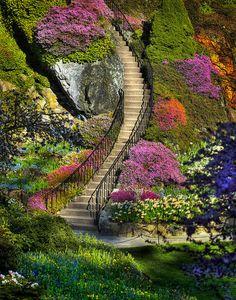escaleras, flores, caminos