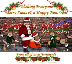 """""""Wishing all a Merry Xmas & a Happy New Year from all of us Have a great year ahead! Technical Analysis, Merry Xmas, Forex Trading, Happy New Year, Wish, Investing, Old Things, Action, Marketing"""