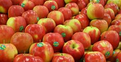 12 Fruits and Vegetables You Should Always Buy Organic (2014 Edition)