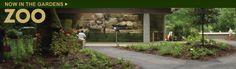 Zoo at Brookgreen Gardens | Myrtle Beach Zoo