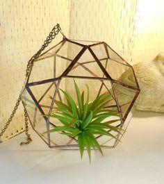 gold polyhedron terrariums - Google Search