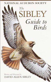 Great birding field guide