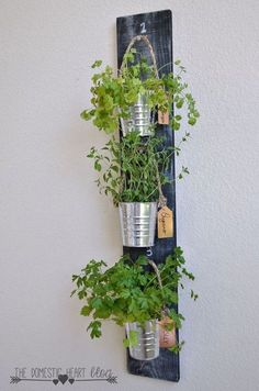 diy simple vertical kitchen herb garden, container gardening, gardening, home decor, kitchen design