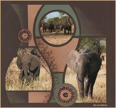 Les Éléphants du Tarangire - suite