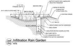 Regen Garten - benutzen Sie das Regenwasser und schaffen Sie einen bezaubernden Garten