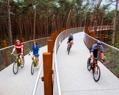 Completed in 2019 in Hechtel-Eksel, Belgium. Images by Visit Limburg. The new cycle path through the trees adds a unique experience to the Limburg cycle route network. Cyclists ride 700 metres along a cycle bridge – a. Forest Path, New Forest, Forest Resources, Conifer Trees, Bike Path, Best Cities, Pathways, Landscape Architecture, Landscape Design