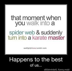 That moment when you walk into a spider web & suddenly turn into a karate master.